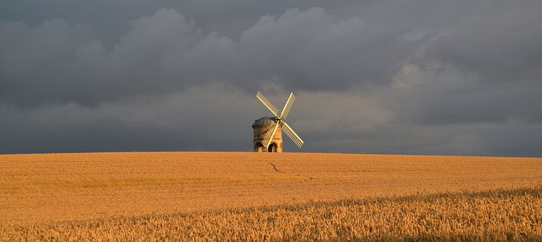 Open a Company in Agriculture in the Netherlands